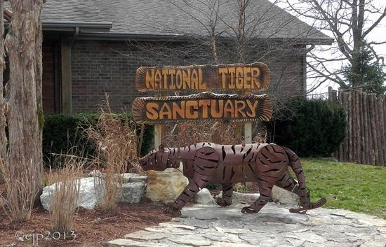 Wild Tiger Sanctuary